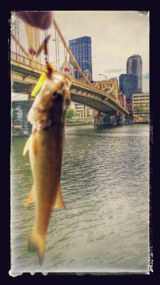 Fishing in Pittsburgh