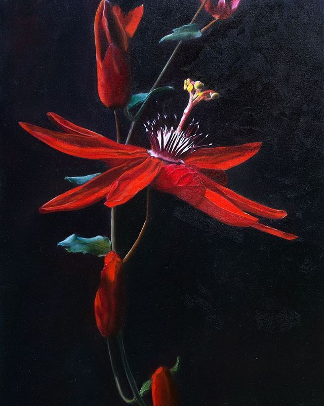 """""""Red Passion"""" oil painting by an Australian artist - Elena Valerie"""