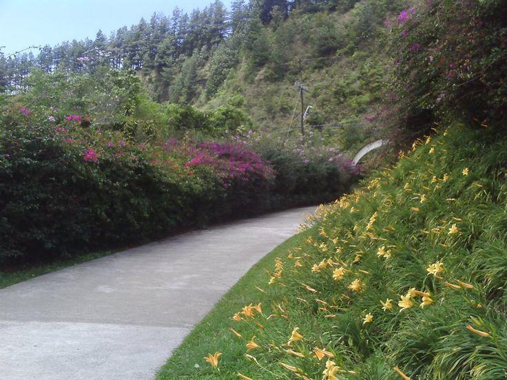 jardín especial