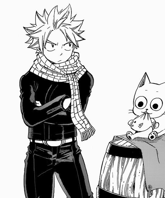 Manga Denizi Fairy Tail 521: 4411 Best Fairy Tail Images On Pinterest