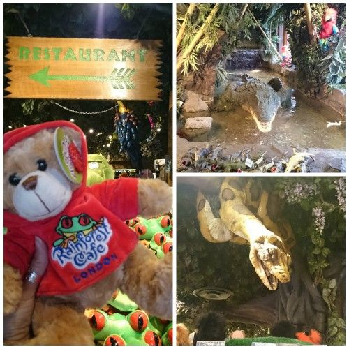 The Rainforest Cafe Review