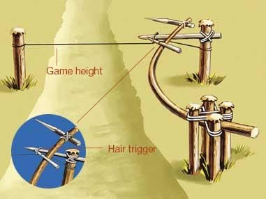 Tension Traps-  Employing fire-hardened spear points under tension, these can be deadly to predator and prey alike. Always set and approach an impaling trap cautiously from behind and use only in an emergency in remote area.