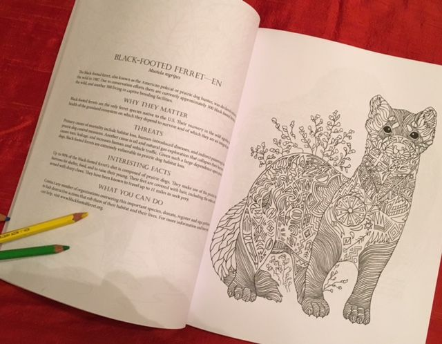Coloring Pages That Look Like Real Animals : 25 best endangered animals coloring book images on pinterest