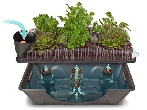 Biolan - luo vihreämpää maailmaa. Biolan Kasteluallas parvekkeelle.