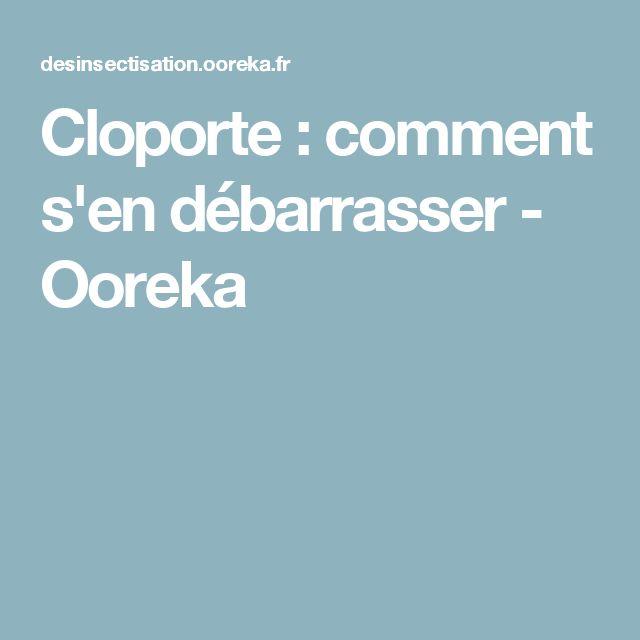 Cloporte : comment s'en débarrasser - Ooreka
