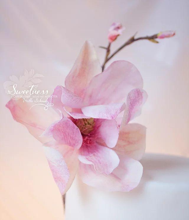 sweetness   Galerie