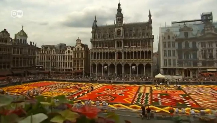 A carpet made out of 600,000 flowers in the heart of Brussels.
