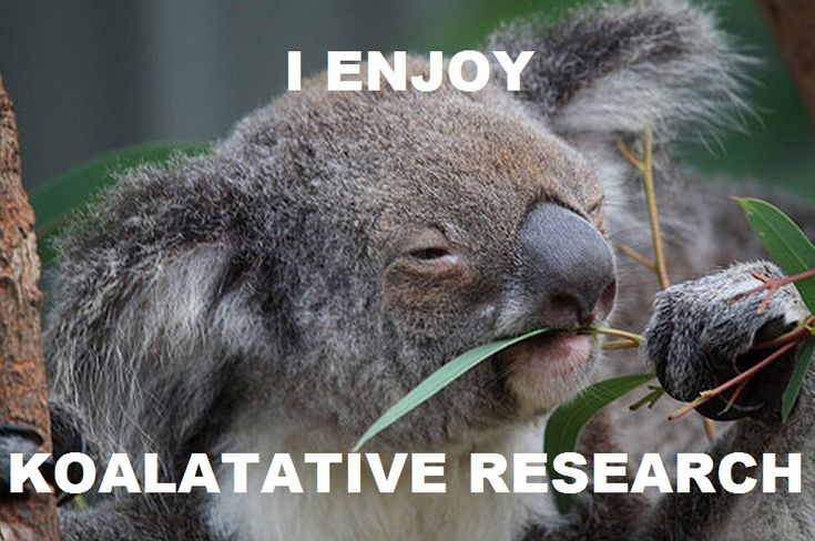 I enjoy koalatative research. (actually at the moment, its not my favorite, but this cute anyway)