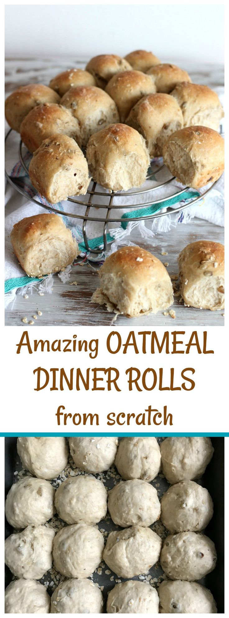SUNFLOWER OATMEAL DINNER ROLLS are soft and crusty. Made with a straight dough, they freeze well and can be made into loaves too.
