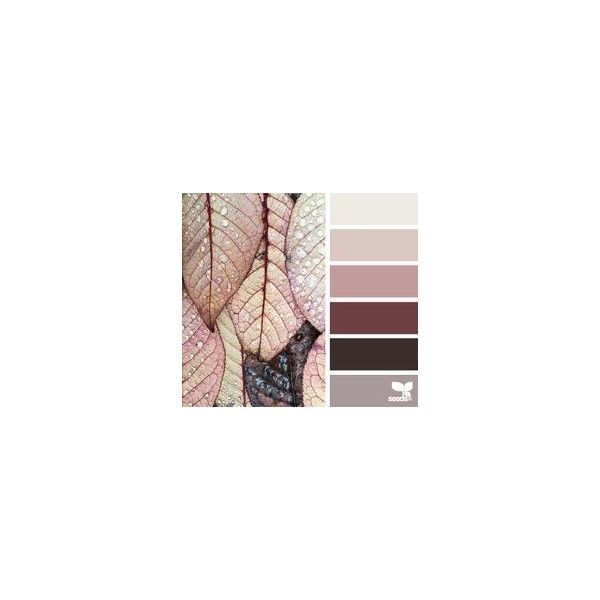 DUSTY SAGE via Polyvore featuring color and palette