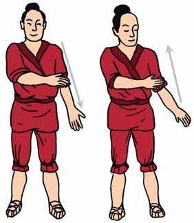 masajear y palmear los brazos bajando por dentro y subiendo por fuera, activa la fluencia de qi en los 3 meridianos yin: pulmón, corazón, pe...