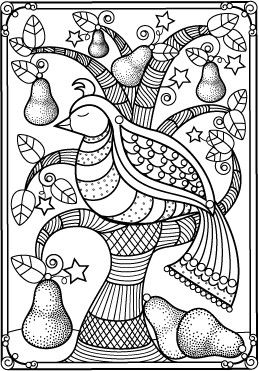 Bird In Pear Tree Adult Coloring PagesColoring