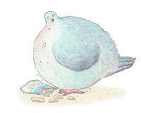 Risultati immagini per piccione fiabe