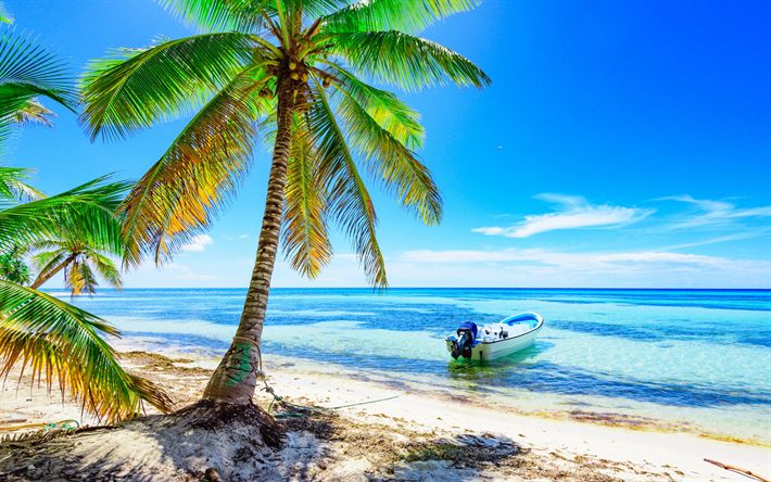 Hämta bilder Sommar, ocean, tropiska öar, beach, palmer, båt, vågor, kusten