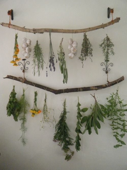 best 25 herb drying racks ideas on pinterest herb rack. Black Bedroom Furniture Sets. Home Design Ideas