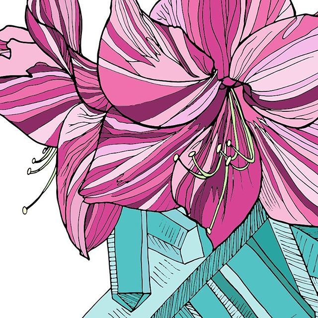 Amaryllis Quartz Colored Preview From The Natural Truths Coloring Book Coming To Amazon Early