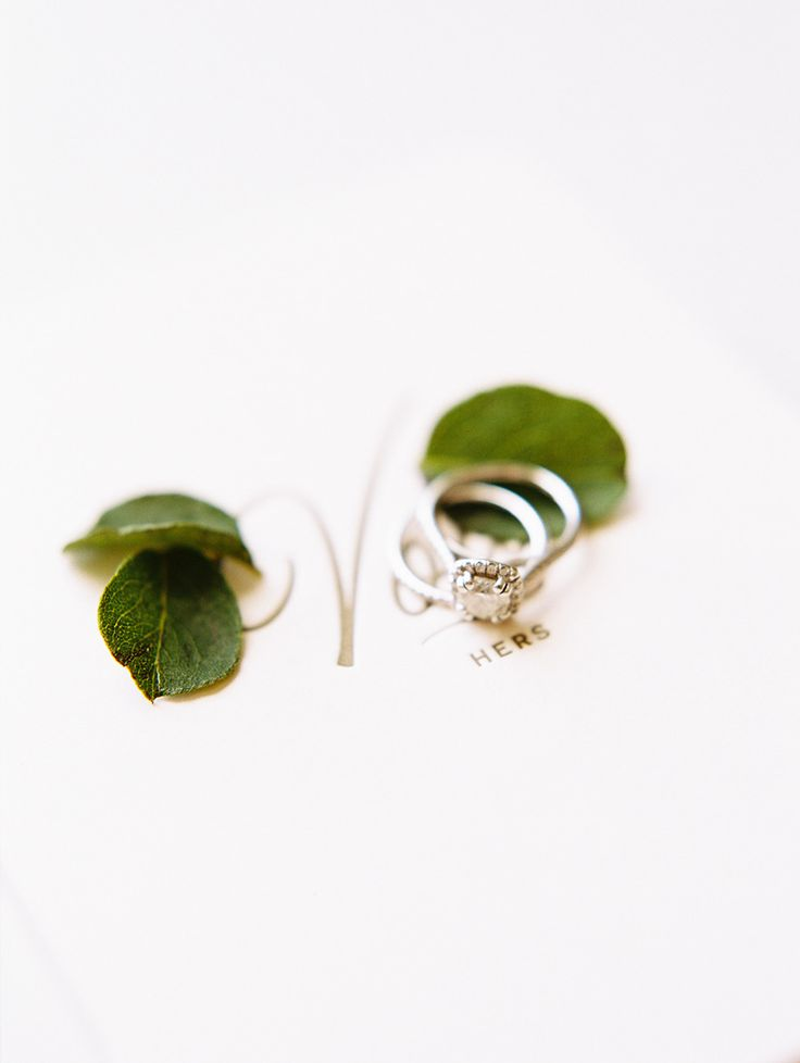#rings  Photography: Brumley And Wells - brumleyandwells.com  Read More: http://www.stylemepretty.com/2015/02/10/elegant-summer-sonoma-wedding/