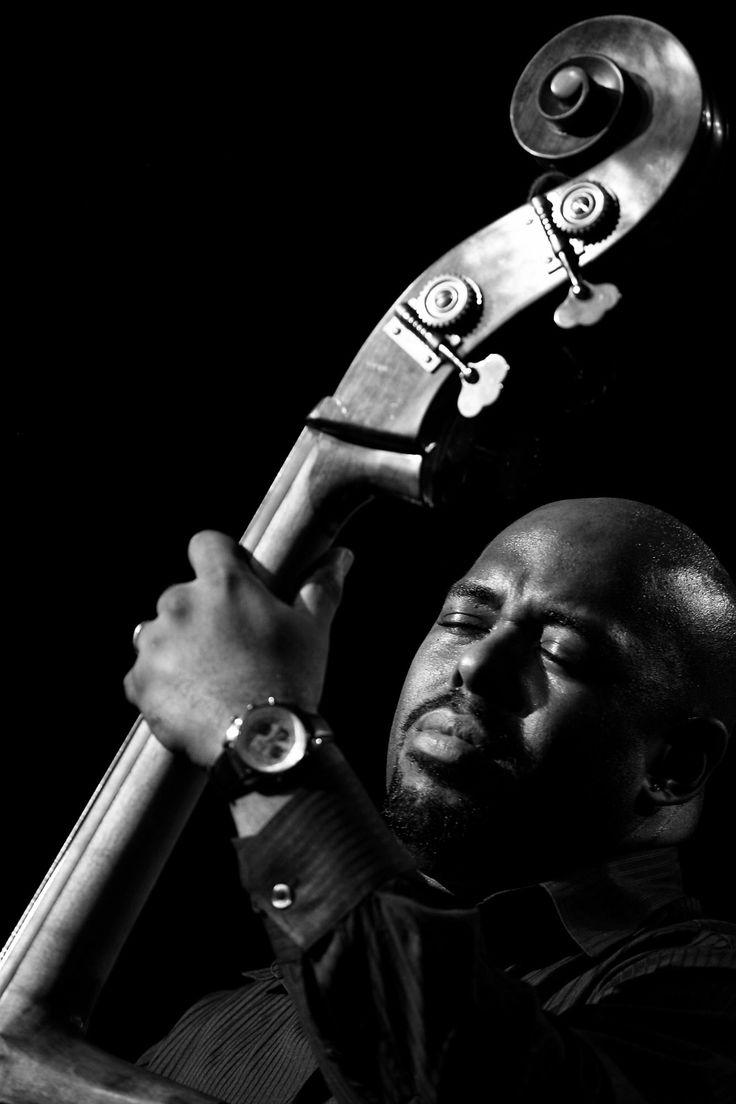 Double Bass & Upright Bass | Musician's Friend