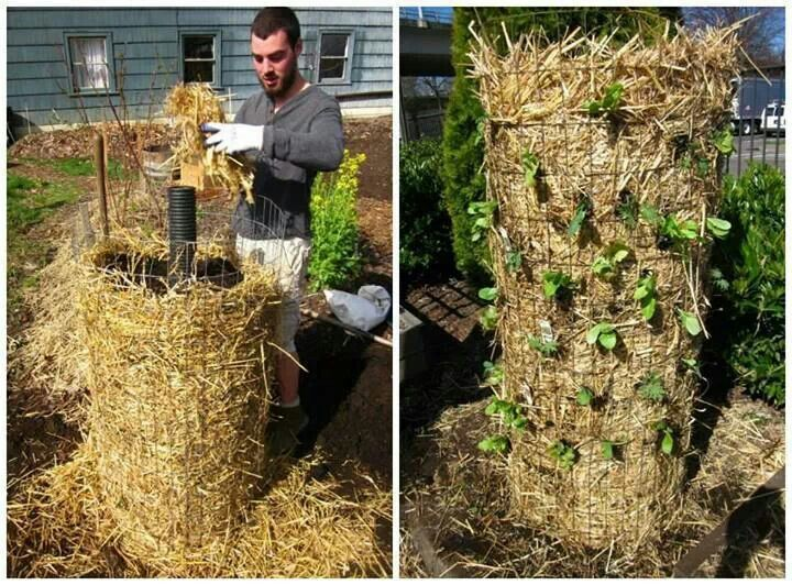 Straw tower vertical garden vertical gardening for Vertical garden tower