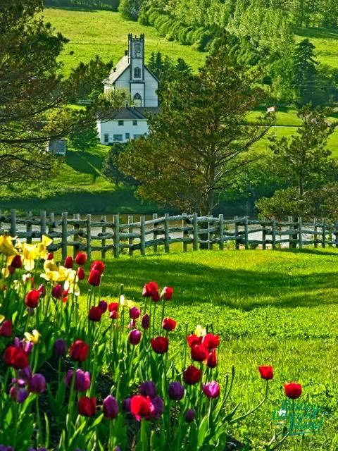 Prince Edward Island, Canada...I've wanted to go here for ages because of Anne of Green Gables haha