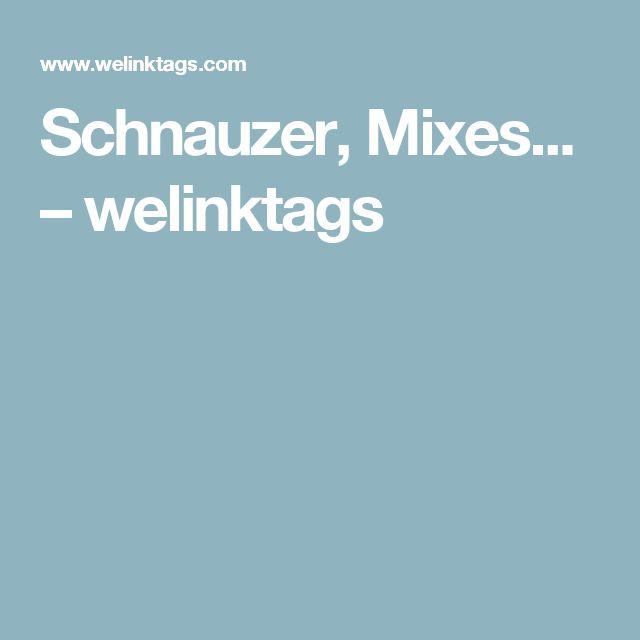 Schnauzer, Mixes... – welinktags
