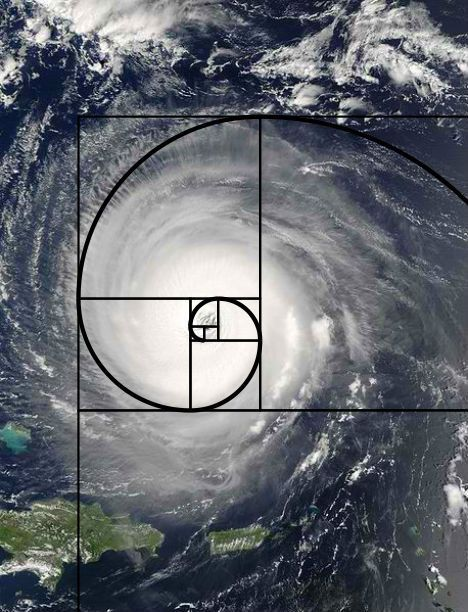 "This shows the Fibonacci sequence in hurricanes. I think this would be a really cool pattern to show students on ""Formation"" day of our unit for math class. MNM"