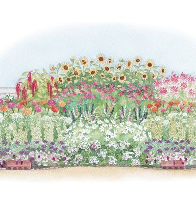The 25 best Flowers for cutting garden ideas on Pinterest