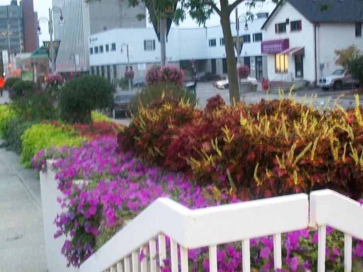 Police Gardens
