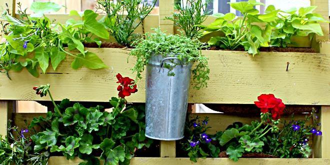 Ιδέες & κατασκευές από ξύλινες παλέτες για πράσινο μπαλκόνι περισσότερα στο : http://www.helppost.gr/how-to/paletes/idees-balkoni-kipos-louloudia/