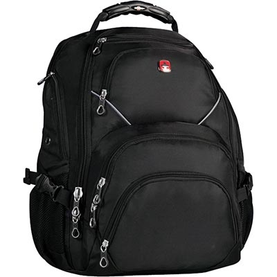 Swiss gear backpack. Cheap and sturdy.  Hold my laptop, books, lunch and gym clothes, with room to spare.