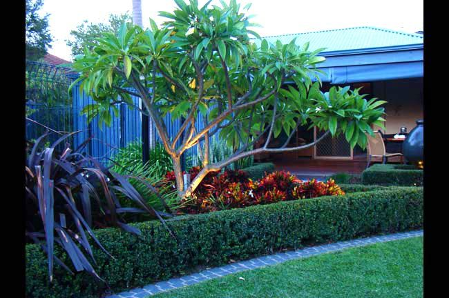 Mondo Landscapes - Award winning landscape design in Perth ...