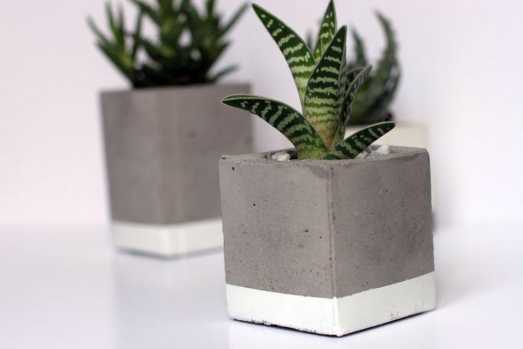 Concrete pots plants // #design #DIY