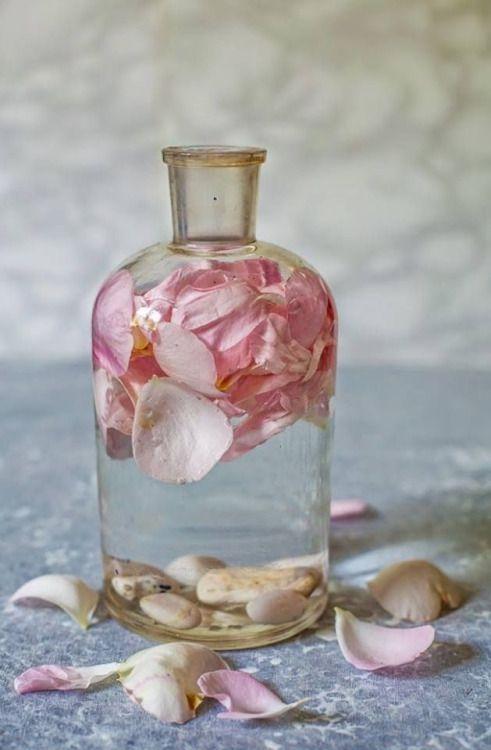 Herbs:  #Rose #Water.