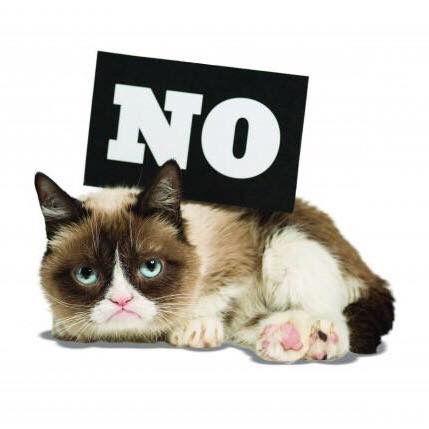 42 besten grumpy cat bilder auf pinterest m rrische katze katzen und katzen witze. Black Bedroom Furniture Sets. Home Design Ideas
