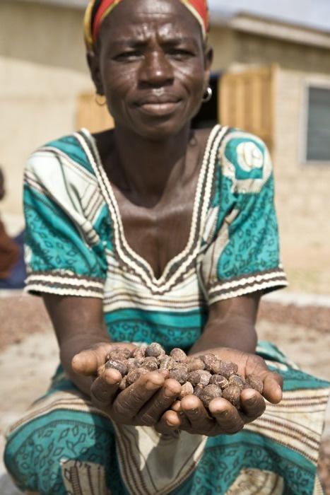 Akanteema Akolbila is a member of the Akoma Cooperative in Bolgatanga in Ghana, which produces shea butter.