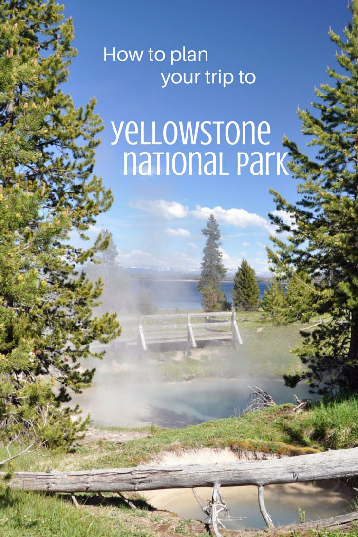How to plan your trip to Yellowstone National Park: a full guide!