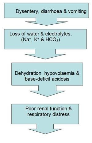 how to tell if a abg is metabolic acidosis