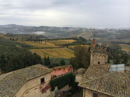 Foton av En smak av Chianti: toskansk ost, vin och lunch från Florens - Viator