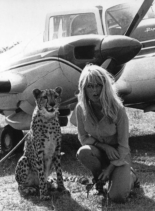 Brigitte Bardot and friend. @Manu d Birba #manubirba