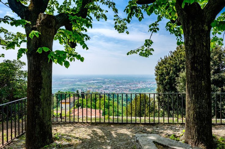 https://flic.kr/p/HBk1QB | Two trees | Just two trees between you and amazing panorama of Bergamo city in Italy.