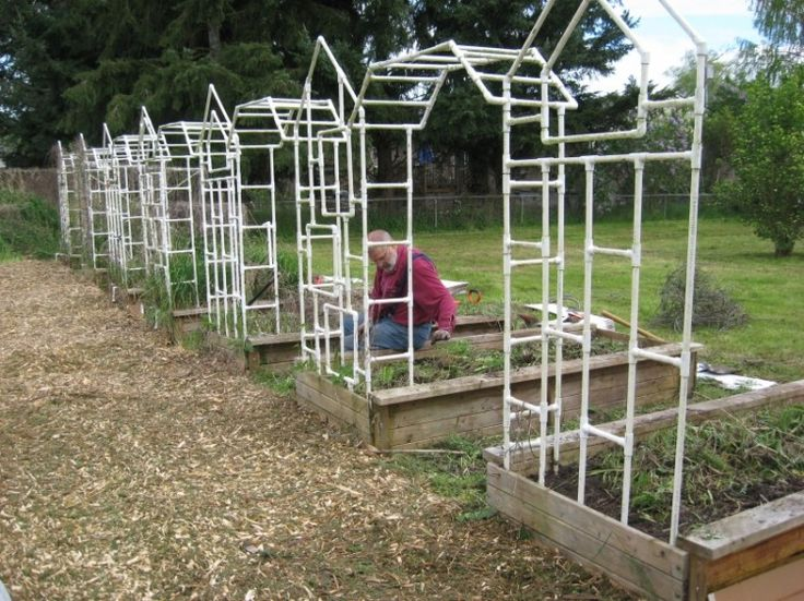 Best 25 Trellis design ideas on Pinterest Trellis ideas Diy
