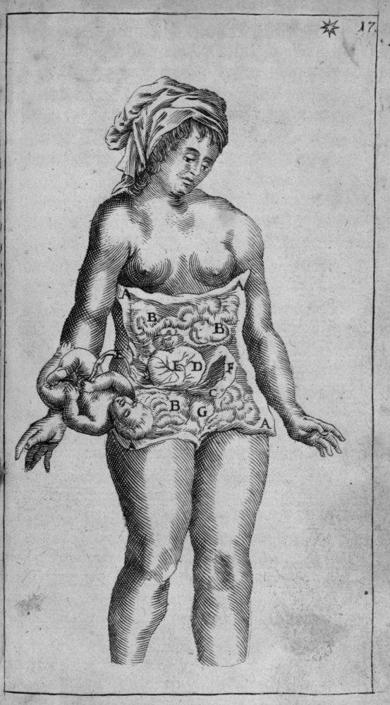 VAN ROONHUYSE, Hendrick Ouvrage : Heel konstige aenmerckingen Edition : Amsterdam: Theunis Jacobsz, 1663 Cote : 030954 Empl. de l'image : p. 17 Technique : Gravure - Burin