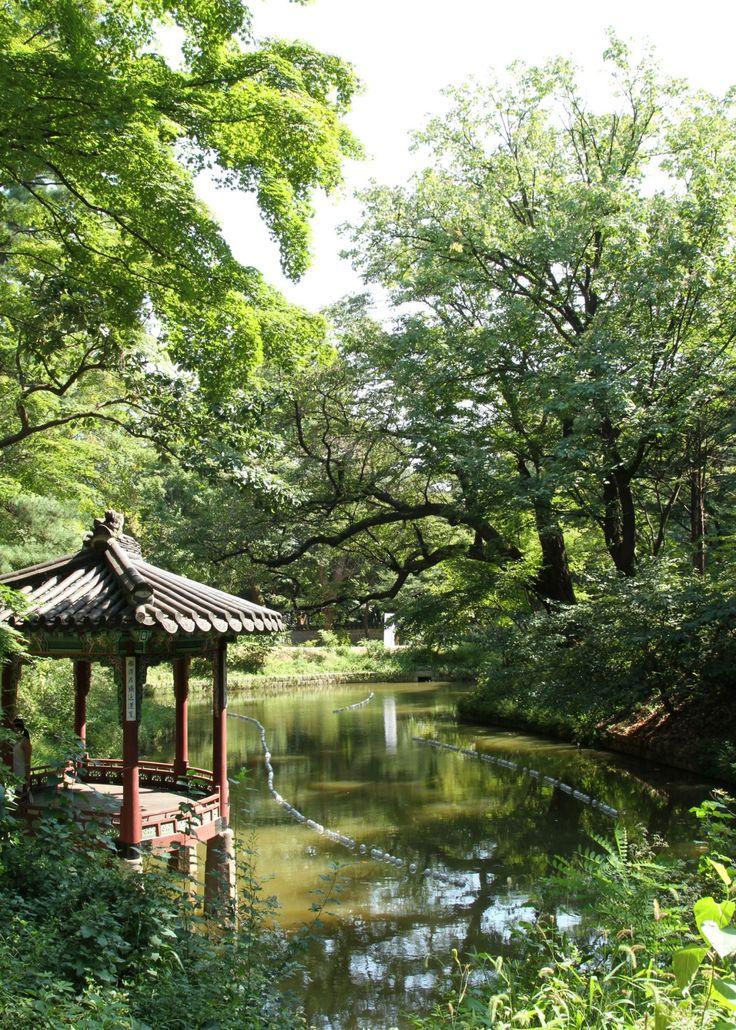 Changdeokgung Palace, Seoul  September 2014  Lindsay Mickles Photography |   www.theneverendingwanderlust.blogspot.com