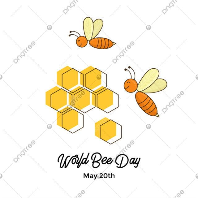 Couple Bee Character Bee Clipart Bee Icons Couple Icons Png And Vector With Transparent Background For Free Download Bee Clipart Bee Icon Bee