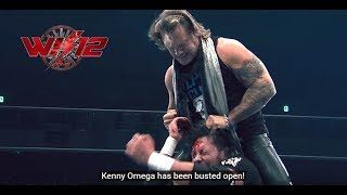 Kenny Omega Talks Games With WWE Star, Chris Jericho - Omega Hype Video, Wrestle Kingdom Fan Festa - WrestlingInc.com  ||  Kenny Omega Talks Games With WWE Star, Chris Jericho - Omega Hype Video, Wrestle Kingdom Fan Festa http://www.wrestlinginc.com/wi/news/2017/1229/635377/kenny-omega-talks-games-with-wwe-star/?utm_campaign=crowdfire&utm_content=crowdfire&utm_medium=social&utm_source=pinterest