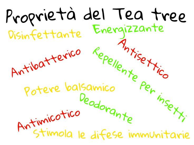 BeautyBlogger: Maniaca del tea tree - 16 usi che forse non conoscevi!
