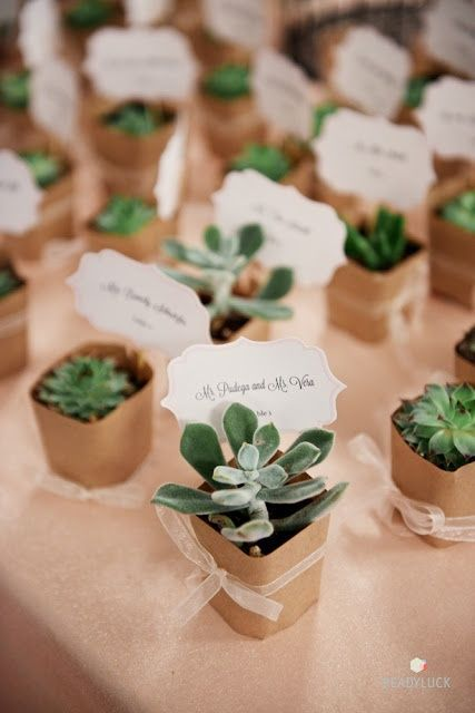 Estas suculentas sirven tanto como indicador de sitio como souvenir - succulent wedding favors and place cards. Cute idea!