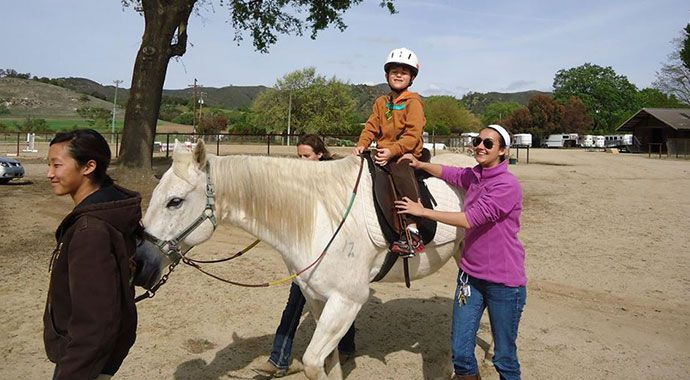 Therapeutic Riding: Partners In Equestrian Therapy