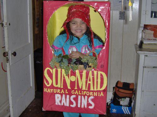 raisins homemade kids costumescheap halloween costumesfunny - Cheap Costume For Halloween