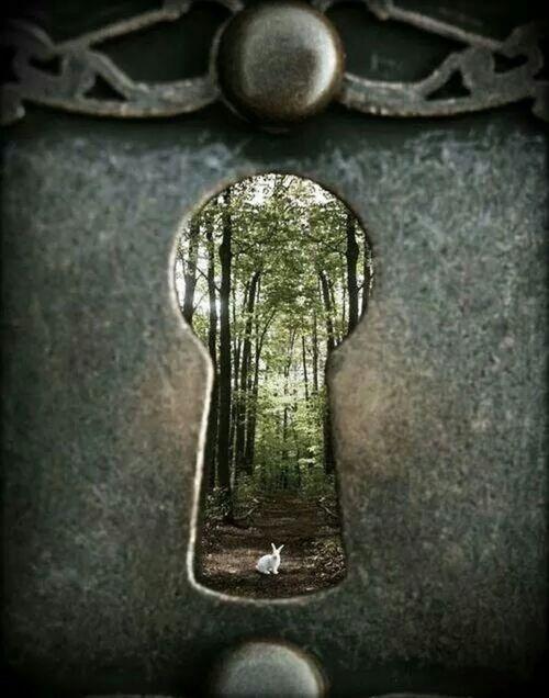 alice in wonderland | Tumblr | 'Psyche~in ALL it's Glory ...